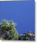 Paradise For Backpackers - Crater Lake In Crater National Park - Oregon Metal Print