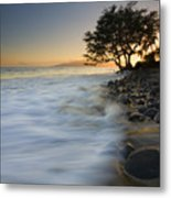 Paradise Gold Metal Print by Mike  Dawson