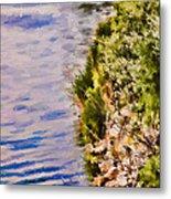 Paradise Lake Shore Metal Print