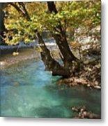 Paradise River Metal Print