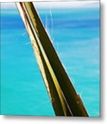 Paradise Within Metal Print