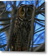 Parallel Leanings - A Hooter Study Metal Print