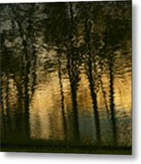 In The Park . Metal Print