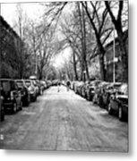 Park Slope Street Light Metal Print