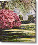 Park Spring Blossom With Shadows Metal Print
