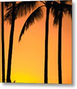 Park Stretch Metal Print