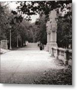 Park Walk In Fall Metal Print