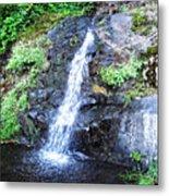Parker Creek Falls Metal Print
