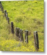 Parker Ranch Fence Metal Print