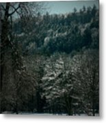 Parks Winter Glory Metal Print