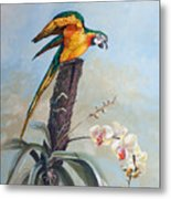 Parrot And Orchid Metal Print