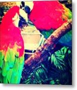 Parrot Couple Metal Print