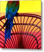Parrot Sitting On Chair Metal Print by Garry Gay