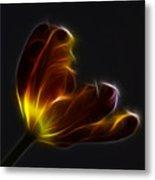 Parrot Tulip Abstract Metal Print