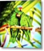 Parrotheads 2016 Redux For Shirts Metal Print