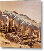 Party Of Eight  6973 Metal Print