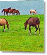 Paso Fino Horses Graze By Seaside Metal Print