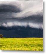 Passing By - Storm Passes By Lone Tree In Western Nebraska Metal Print