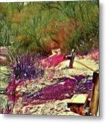 Passion Colors Everything  Metal Print