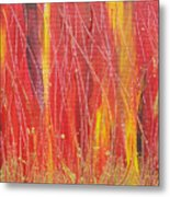 Passion Fire Metal Print