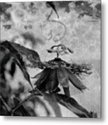 Passion Flower Black And White Metal Print