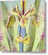 Pastel Iris Metal Print