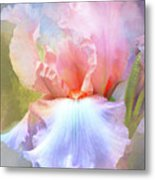 Pastel Iris Pleasure Metal Print