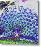 Pastel Peacock Metal Print