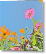 Pastel Poppies Metal Print