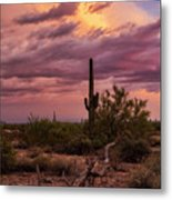 Pastel Sonoran Skies At Sunset  Metal Print