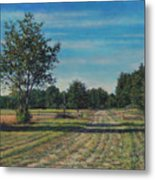 Pastoral Off Poplar Hill Road Metal Print
