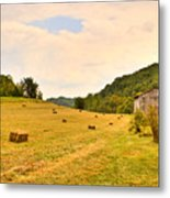 Pastorial Framland In Kentucky Metal Print