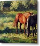 Pasture At Whites Crossing      Horse Painting Metal Print