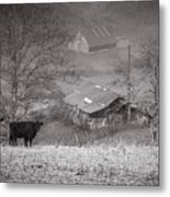 Pasture Field And Barns Metal Print