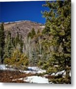 Patches Of Snow Metal Print