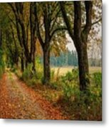 Path Along The Horses Meadow On The Farm Lovedayvale L A S Metal Print