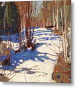 Path Behind Mowat Lodge Metal Print