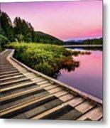Path By The Lake Metal Print