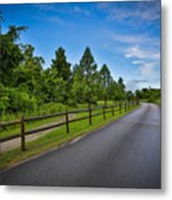 Path - Color Metal Print