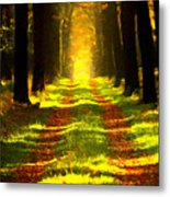 Path In The Forest 715 - Painting Metal Print