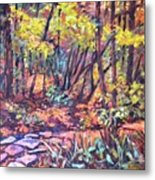 Path Near Pandapas Metal Print