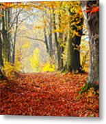 Path Of Red Leaves Towards Light In Fall Forest Metal Print