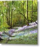 Path Through Bluebell Wood Metal Print