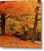 Path Through New England Fall Foliage Metal Print