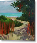 Path To Delray Beach 1 Metal Print