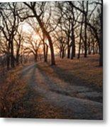 Path To The Sun Metal Print