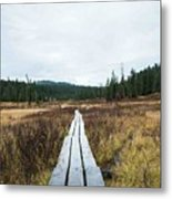 Path To The Unknown Metal Print