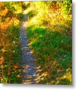Path To Unknown Metal Print