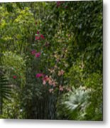 Path With Flowers Metal Print