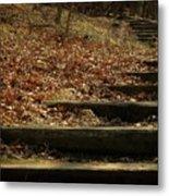 Paths Of The Seasons Metal Print